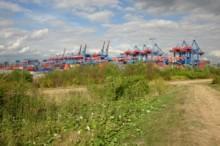 Blick auf Containerterminal Altenwerder (2010), Foto: G. Bertram