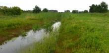 Graben in Moorwerder, Juli 2014