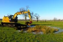Ein Kleingewässer wird wiederhergestellt